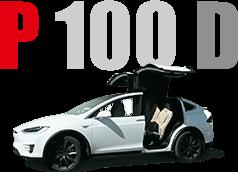 Performance P100D